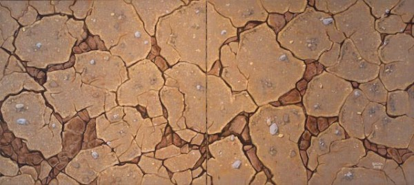 cracked earth II